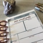 Disc Planner Goal Planner Pages 6