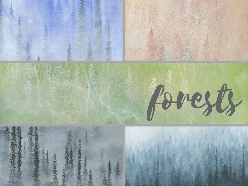 forests collection